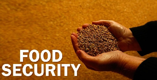 دانلود پاورپوینت امنیت غذایی