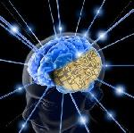 739490x150 - دانلود مقاله روانشناسی یادگیری